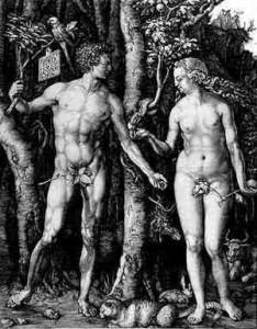 tra simbolo e mito - sacro e profano - durer - adamo ed eva