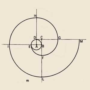 spirale-policentrica